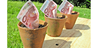 Billets-en-pot-538x260